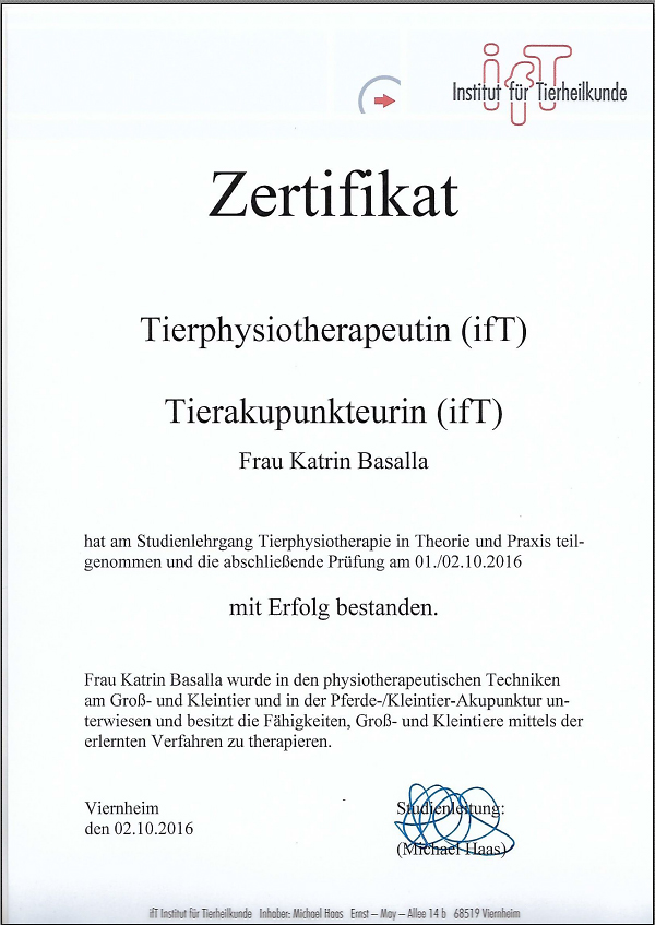 Zertifikat ifT - Katrin Weyers (geb. Basalla)
